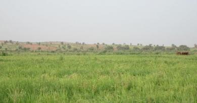 Mauritanie : 9 millions d'euros d'appui français à la sécurité alimentaire